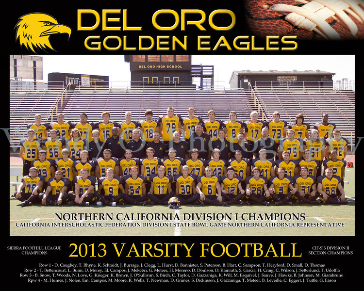 Official Varsity Team Photo 2013